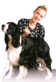 dog grooming school,