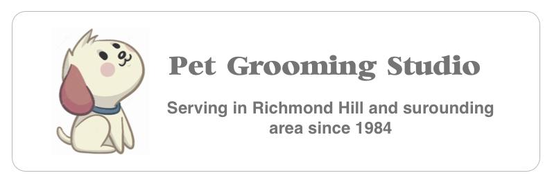 pet grooming studio