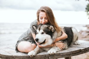 dog grooming school, learning